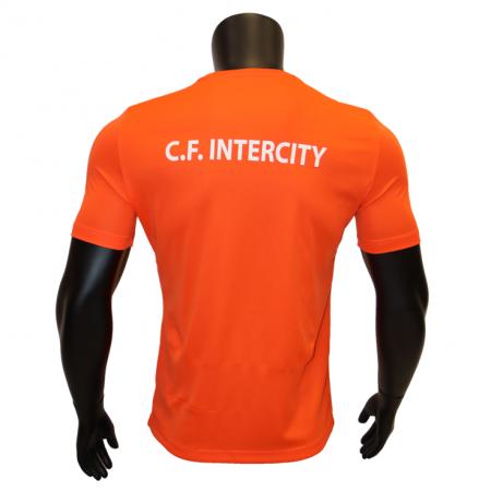 Camiseta Entrenamiento Cf...